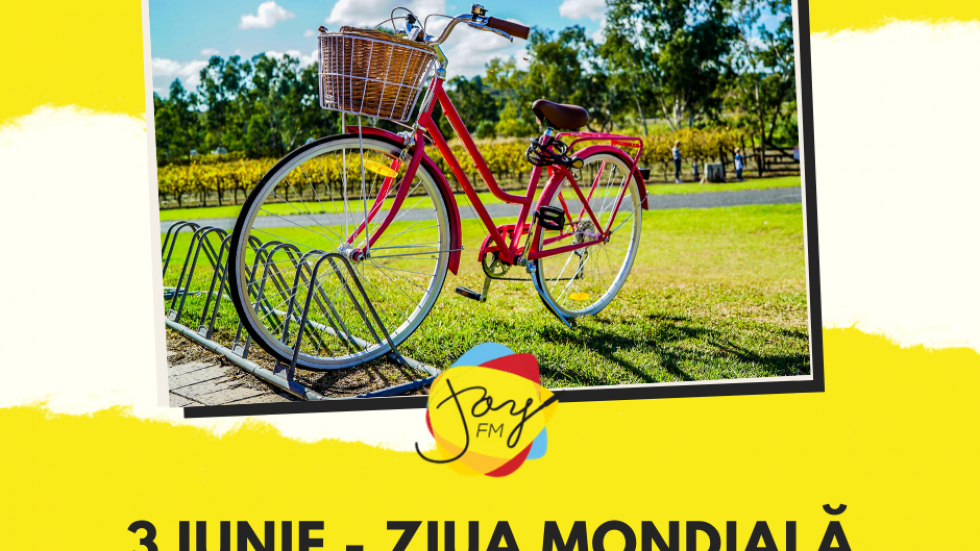 Ziua mondială a bicicletei (ONU)